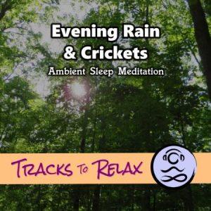 Evening rain & crickets