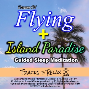 Dreams of flying island paradise combo