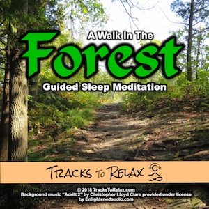 Forest Walk Sleep Meditation