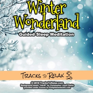 Winter wonderland walk sleep meditation