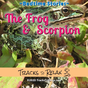 The Frog and Scorpion Sleep Meditation