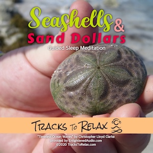 Sea Shells and Sand Dollars Sleep Meditation