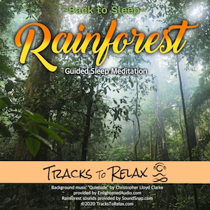 Back To Sleep Rainforest Meditation